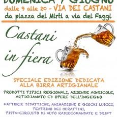 CASTANI IN FIERA - edizione Sagra della Birra Artigianale