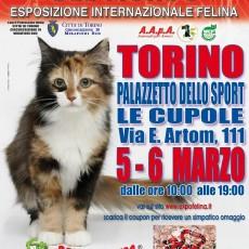 locandina-felina-Torino.jpg