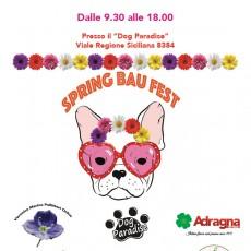 SPRING BAU FEST