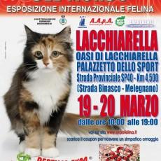 locandina Lacchiarella_2016_