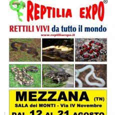 locandina-reptilia-Mezzana-FILEminimizer.jpg